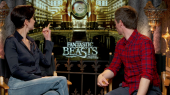Fantastic Beasts and Where to Find Them: Katherine Waterston & Eddie Redmayne