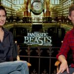 Fantastic Beasts and Where to Find Them: Katherine Waterston & Eddie Redmayne